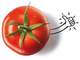 Tiefkühlpizza frische Tomaten